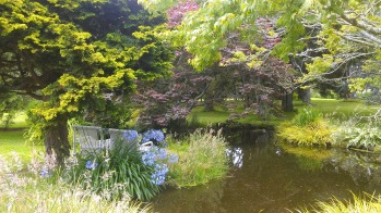 Beautiful and extensive gardens